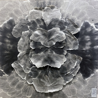 MANDALA, sumi ink on rice paper on board, 18 x 18 inches