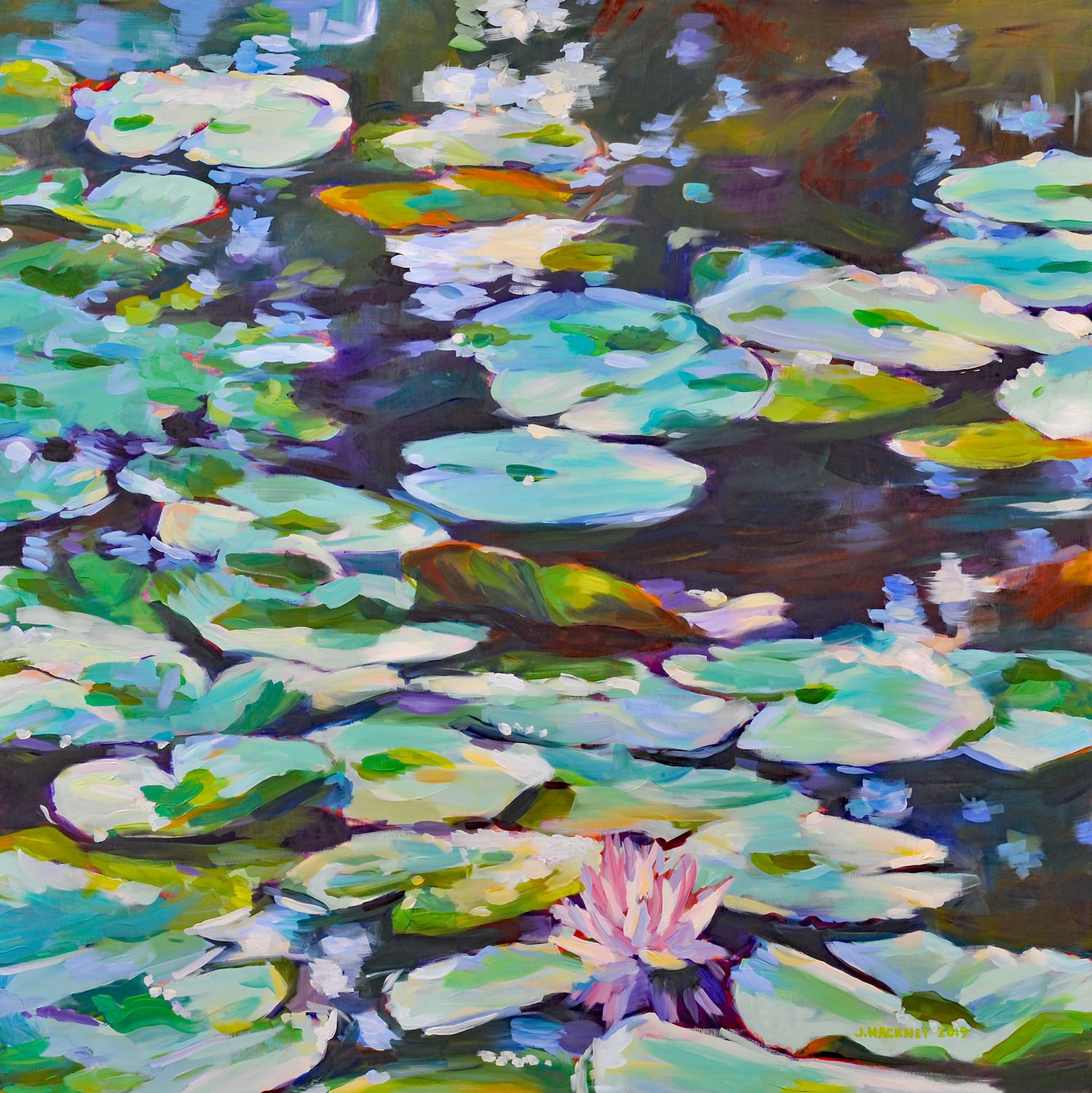 WATER LILY 36 x 36 IN