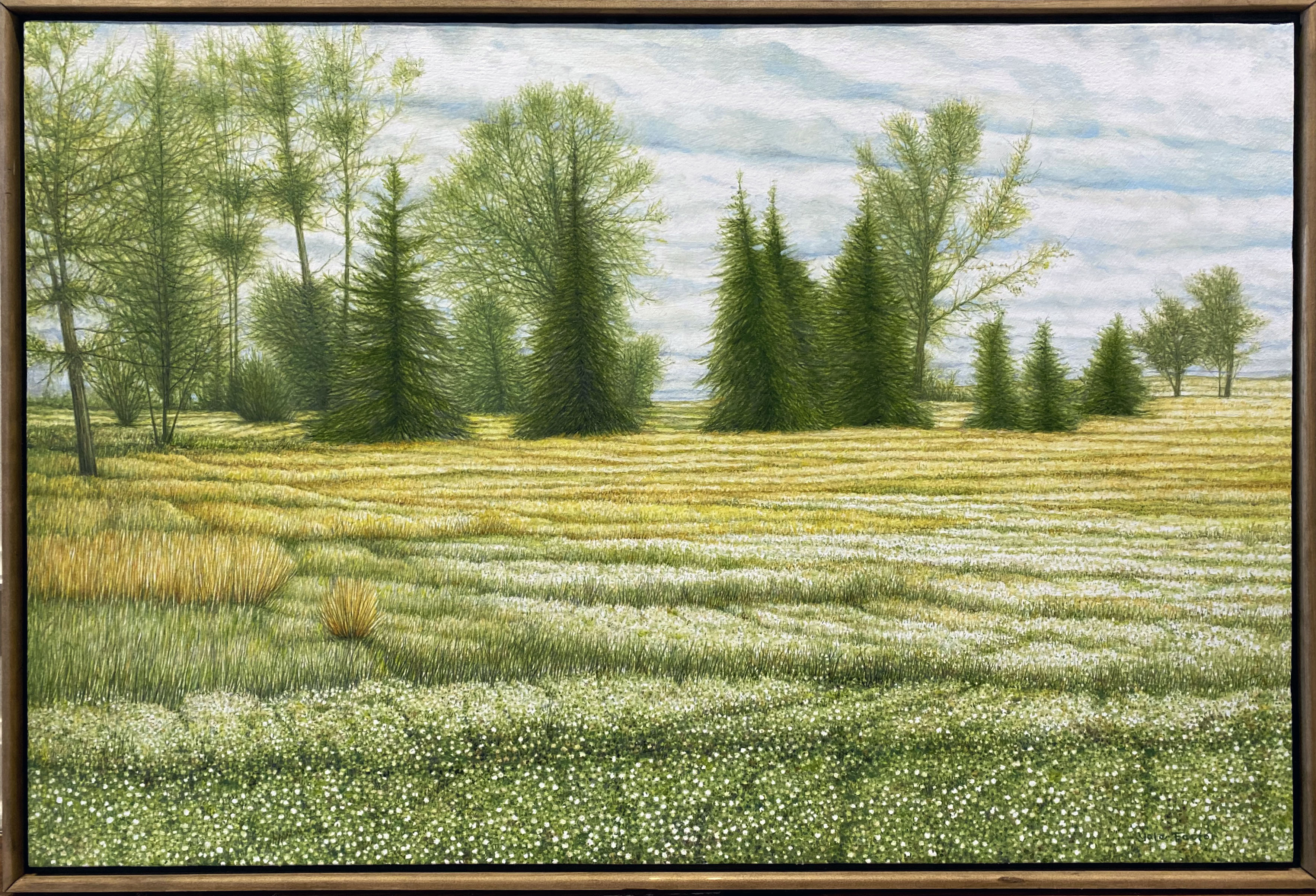 MY PRIVATE ILLINOIS,  oil on canvas, 24 x 36 in