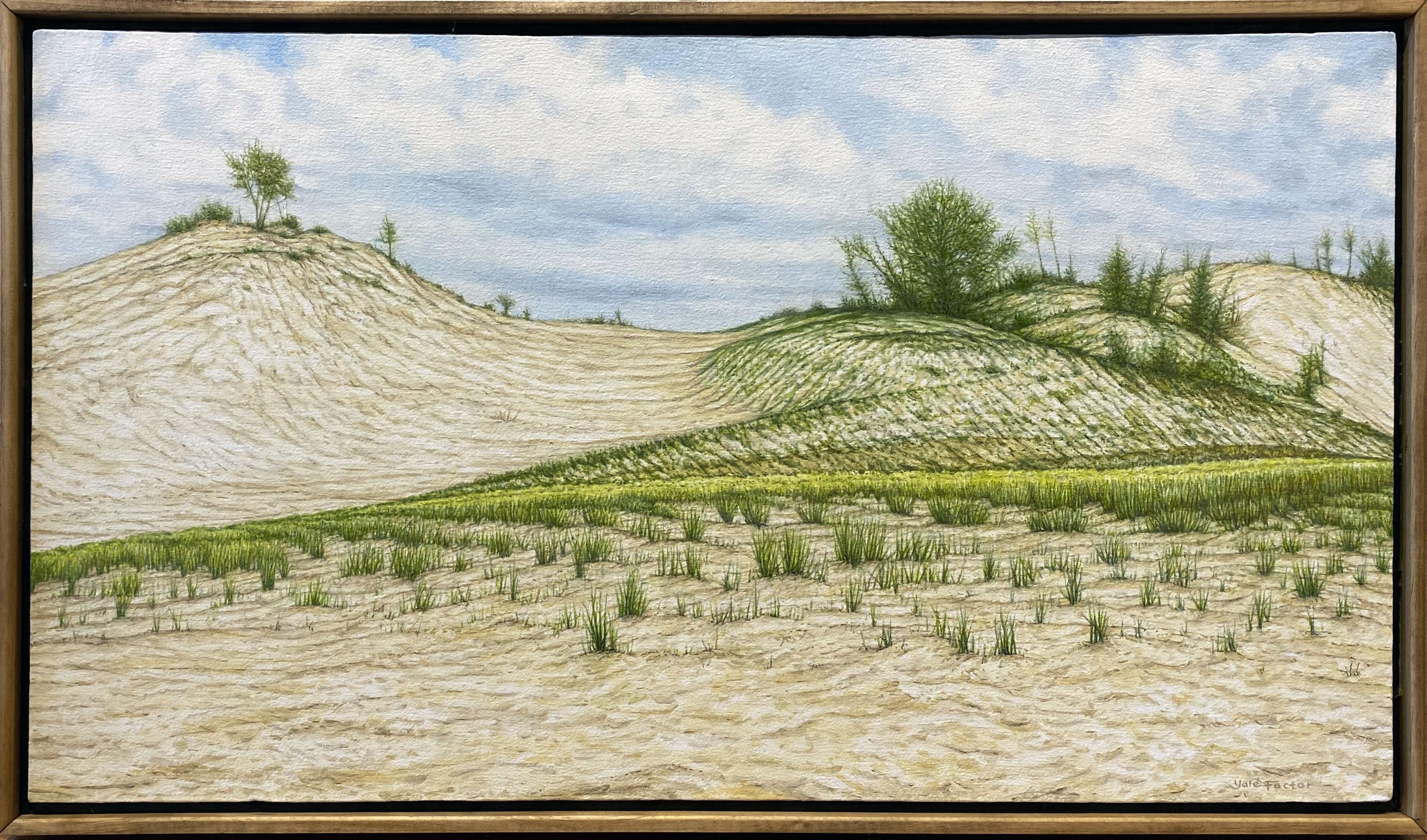 Warren Dunes,  oil on canvas, 17 x 29 in