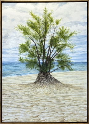 WARREN DUNES SENTINEL TREE, oil on canvas, 41 x 29 in